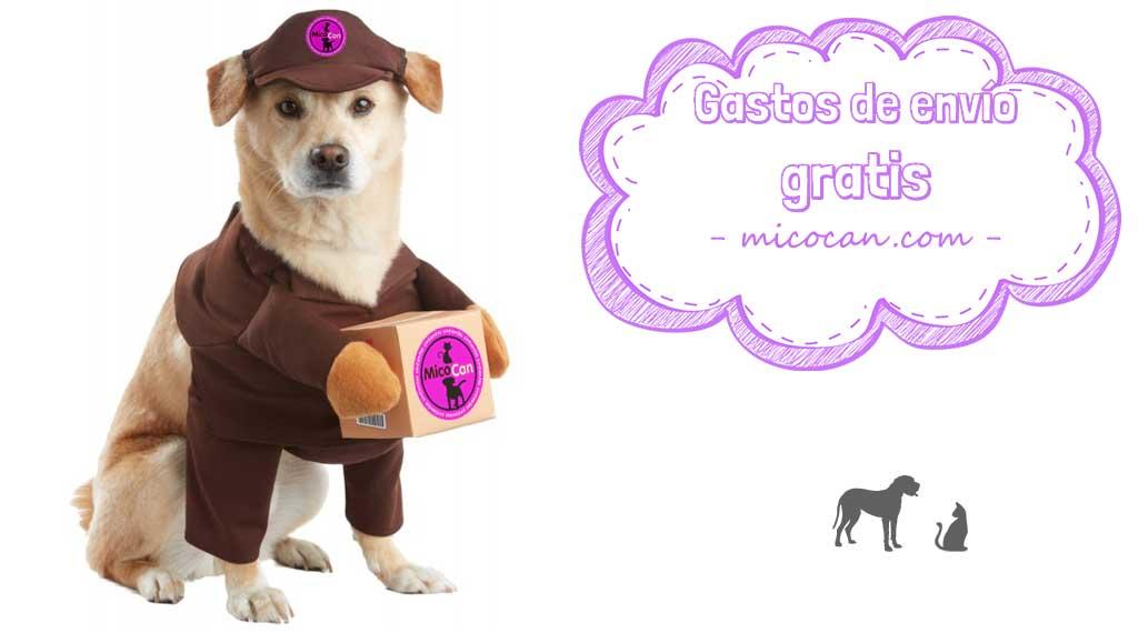 perro repartidor promocionando gastos de envío gratis